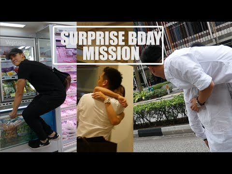 OUR SECRET BIRTHDAY SURPRISE MISSION