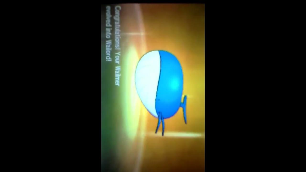 Wailmer Is Evolving Pokemon Sun