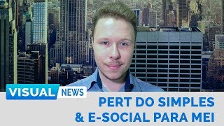 PERT DO SIMPLES NACIONAL E E-SOCIAL PARA MEI | Visual News
