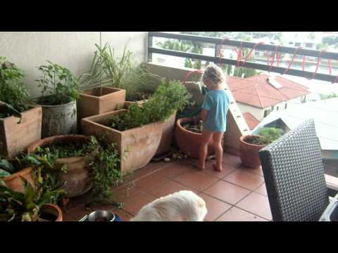 Learning To In The Garden