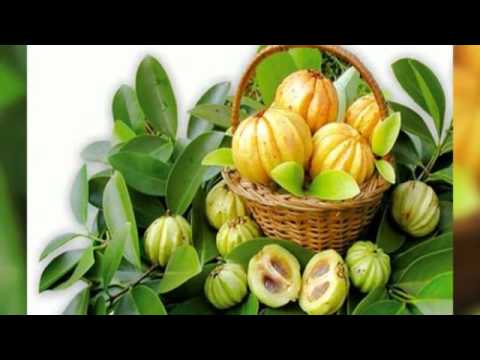 Thumbnail for Garcinia Cambogia Free Trial