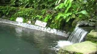 Hidden Valley Springs - Manila Tour - WOW Philippines Travel Agency