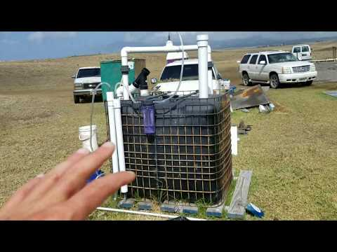 My Home Bio-gas Filling Station Build Hawaii free cooking gas