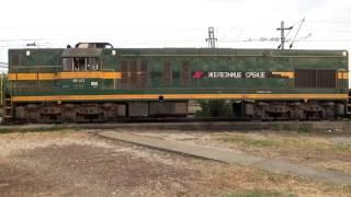 Startovanje Dizel Lokomotive serije 661 - 243
