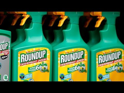Exposure to Monsanto's RoundUp chemical up 500% over 20 yrs Human exposure to glyphosate .' the key ingredient in Monsanto's weed-killing products like Roundup .' has increased 500 percent in the past two decades, ..., From YouTubeVideos