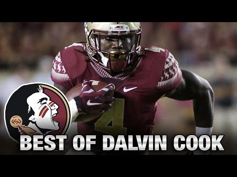 FSU'S Dalvin Cook's Best Plays Vs Miami