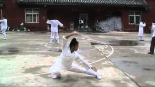 Wudang Ji Ben Quan 1