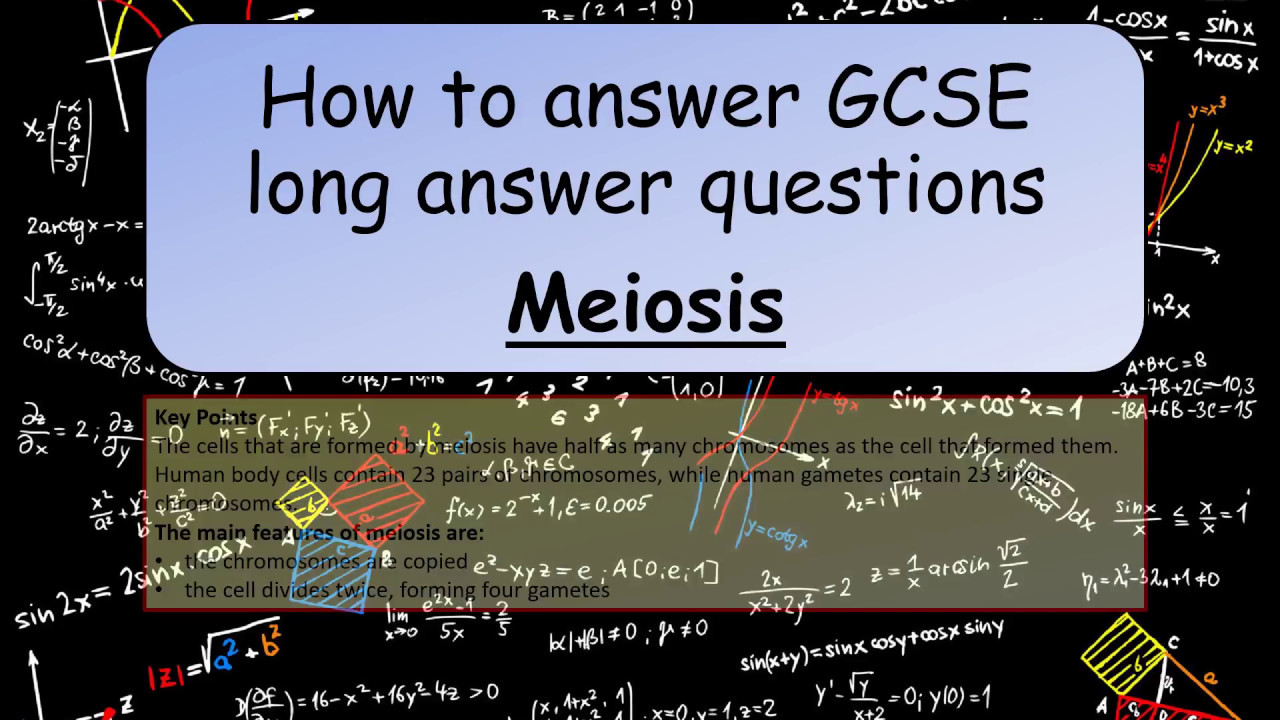 Gcse science revision how to answer gcse long answer questions gcse science revision how to answer gcse long answer questions meiosis publicscrutiny Images