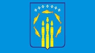видео Артподготовка с Вечеславом Мальцевым 2.01.2017