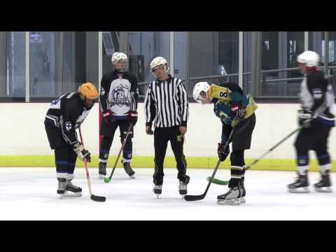 Forest Knights vs Vipers Ice Hockey (2nd Div)