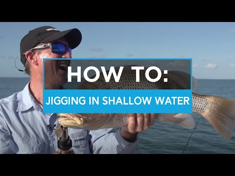 HOW TO: Jigging a Squidgies soft plastic in shallow water