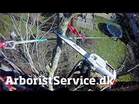 how to use a tree climbing lanyard