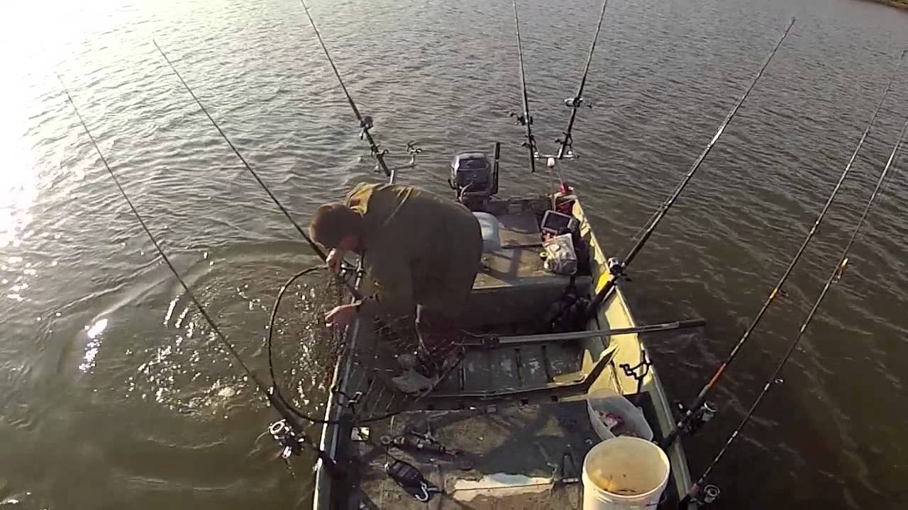 743 pounds of blue catfish in 4 hours solo james river for James river fishing report