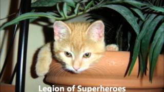 Legion of Superheroes Chain of Command Review