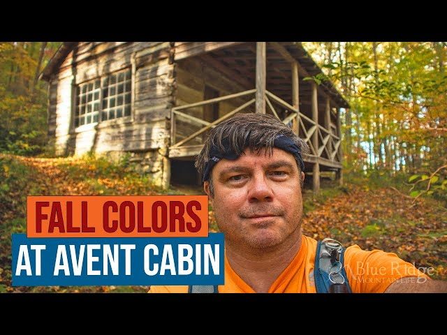 Fall Hike to Avent Cabin in Elkmont, Great Smoky Mountains National Park