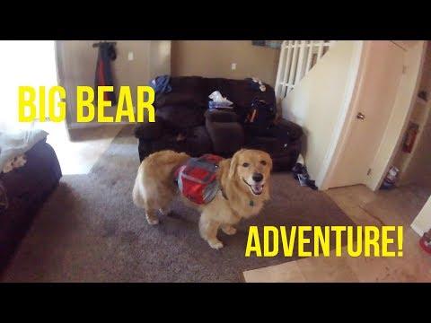 OSHIE'S BIG BEAR ADVENTURE PART 1 | Oshies World