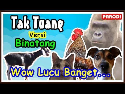 Tak Tun Tuang Cover Binatang   Lucu Banget # Parody 🐓🐈🐐🐒🐕