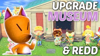 How To Find REDD and UPGRADE Your Museum In Animal Crossing New Horizons!