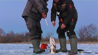 МОНСТР ПОЙМАН ЩУКА ЕЛЕ ВЛЕЗЛА В ЛУНКУ РЕКОРД ВЗЯТ Вот это рыбалка