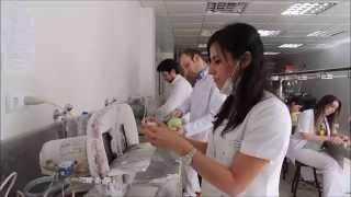Atatürk Üniversitesi Diş Hekimliği Fakültesi 2015 Mezunları