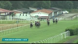 Vidéo de la course PMU PREMIO BARES DEL HIPODROMO