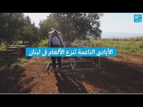 -الأيادي الناعمة- تنزع الألغام في لبنان  - نشر قبل 4 ساعة
