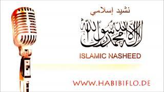 Kitabu Allah dusturi Nasheed I نشيد كتاب الله دستوري
