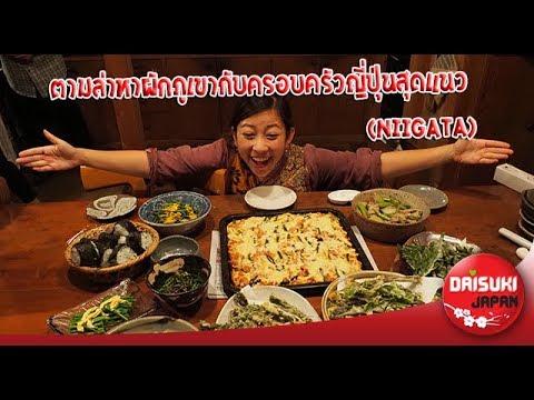 ตามล่าหาผักภูเขากับครอบครัวญี่ปุ่นสุดแนว (Niigata) EP.12 | Daisuki Japan