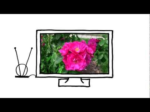 Surviving The Digital TV Transition - Complete Canadian PSA Series