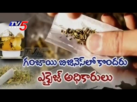 Cannabis Culture in Hyderabad | How Youth Addicted to Drugs..? | Telugu News | TV5 News