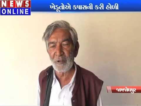 movement on cotton prices in jamjodhpur
