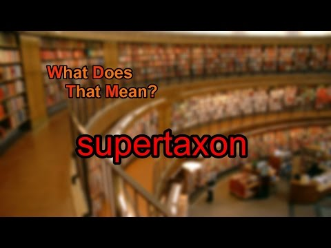 What does supertaxon mean?