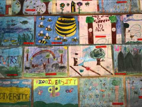Biodiversity Action Day Scoil Mhuire