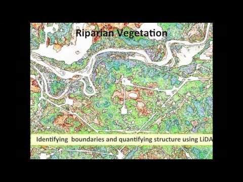 Jay Mills: Riparian Vegetation, Identifying Boundaries & Quantifying Structure Using LiDAR