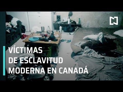 Migrantes mexicanos explotados en Canadá, víctimas de esclavitud - En Punto con Denise Maerker