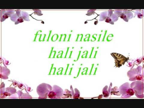 Soku meli nasaba Assamese song lyrics
