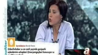 Gezi Parkı olayları -Deşifre Programı