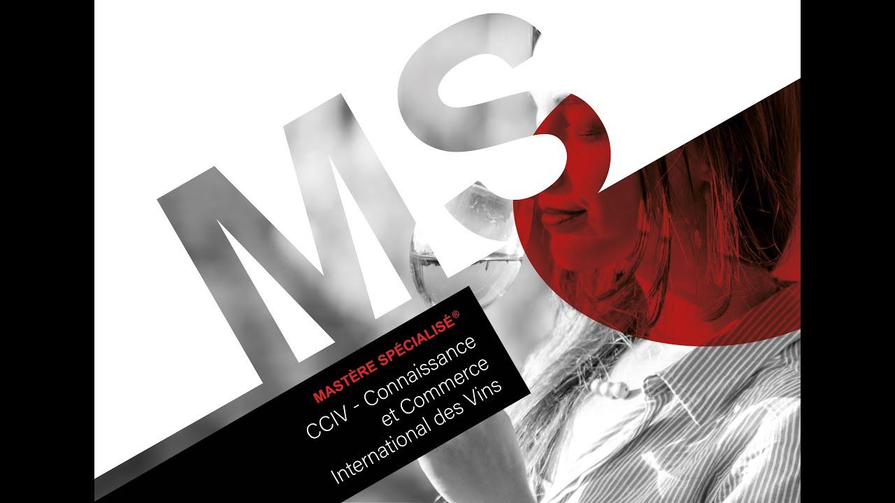 Connaissance et Commerce International des Vins - MS CCIV - Une année en image