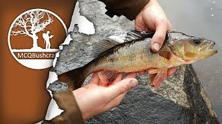 RTT Camping, Cooking and Fishing In The Wilderness