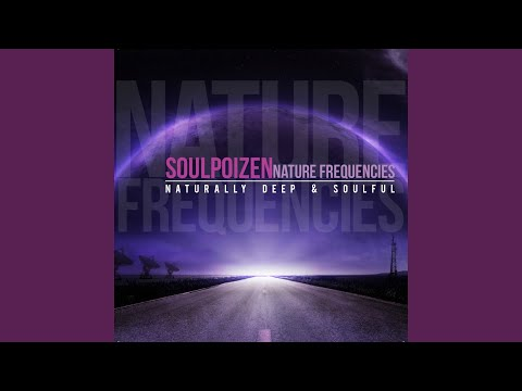 When I'm with You (feat. Holi M) (SoulPoizen Classic Mix)