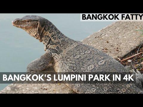 Satorn Bangkok Vlog 3: Lumpini Park in 4K