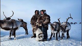 كم عدد سكان الإسكيمو في القطب الشمالي Youtube