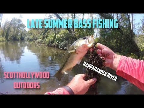 Late Summer Bass Fishing - Rappahannock River