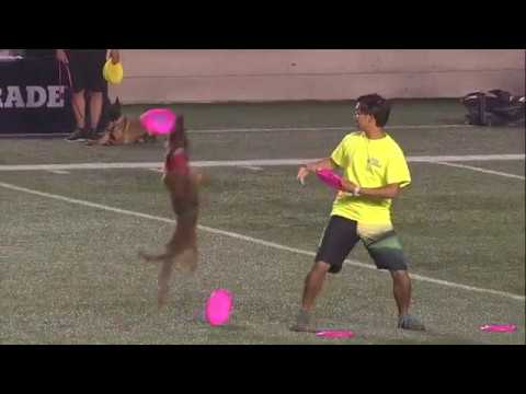 half-time-show-td-place-ottawa-redblacks-vs-winnipeg