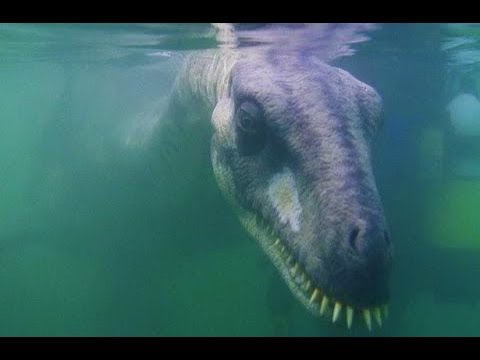STRANGE Mythical Creatures That Turned Out to be Real