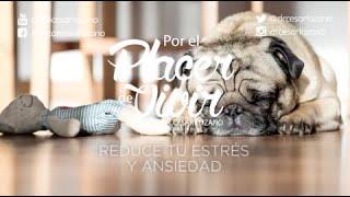 """""""Reduce tu estrés y ansiedad"""" Por el Placer de Vivir con el Dr. César Lozano"""