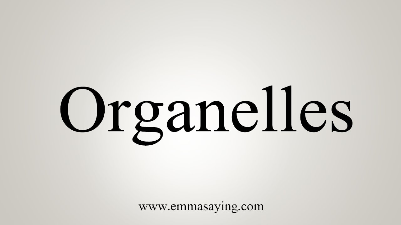 How To Say Organelles