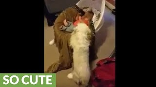 Dog gently rocks baby for comfort
