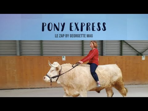Pony Express #4 : CUL-NU à la télé !!