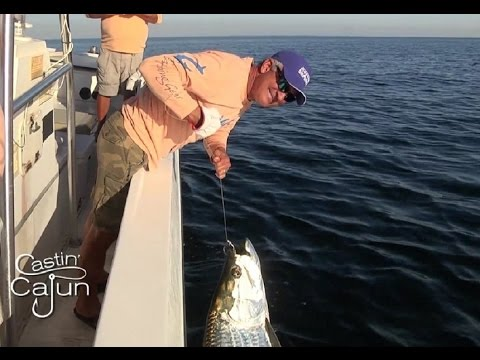 Grand Isle Tarpon Fishing on Castin' Cajun